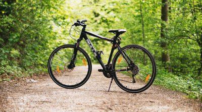 Hybrid bike on a forest pavement