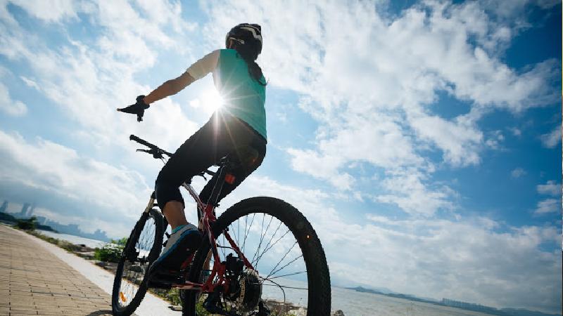 ladies-bike
