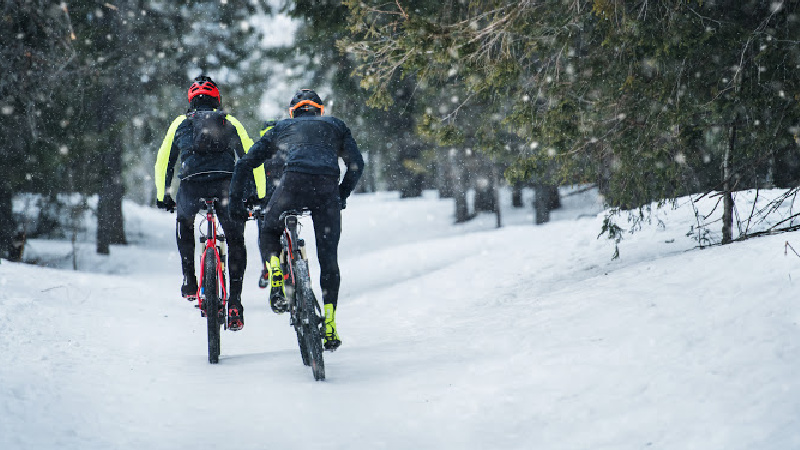 Best-Winter-Road-Bike